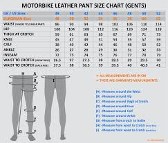 Dainese Delta Pro Motorbike Racing Leather Pant