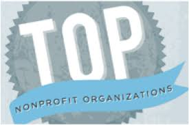 top nonprofit orgs on web list preview top nonprofits