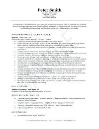 Real Estate Resumes Unique Real Estate Salesperson Resume Gyomorgyuru
