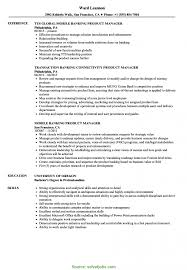 Resume Examples Product Manager Best Of Sample Security Manager Resume Sample Security Manager R RS Geer Books