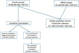 Flow Chart Asd Indviduals With Asd Ctrl Healthy Controls