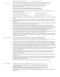 Compliance Resume Inspiration Mullett Joel R Cv 48 Compliance And Risk Management Executive