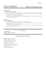 Security Resume Cool Security Professional Resume