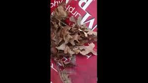 hand crank leaf shredder