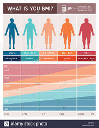 Body Mass Index Infographics With Body Shapes Chart And