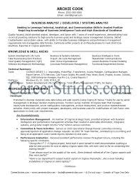 Importance Of A Resume Business Analyst Functional Resume