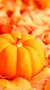fall wallpaper iphone 6 pumpkin.  Wallpaper Pictures Halloween IPhone Wallpaper Backgrounds Intended Fall Iphone 6 Pumpkin W