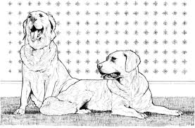 Drawing Free Printable Animal Coloring Pages Labrador Retriever