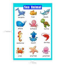 Santsun Educational Preschool Posters Educational Wall Charts School Decorations Classroom Organization For Kindergarten 42x60cm 17x24 Inch Sea