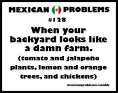 mexican pride sayings. Perfect Pride Mexican Problems  Pinterest Problems Mexicans  And Funny Pics Inside Pride Sayings