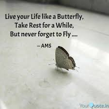 Live Your Life Like A But Quotes Writings By Ashutosh M