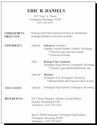 Resume No Work Experience Mesmerizing A Sample Resume For A First Job Elegant Sample Resume High School No