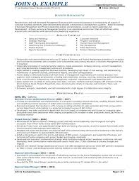 Sample Resume Business Owner – Andaleco