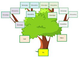 Family Tree Picture Template Family Tree Template