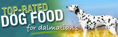 Best Dog Food For Dalmatians Puppies Adult Diet Nutrition
