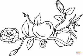 Small Picture Hearts and Roses coloring page Free Printable Coloring Pages