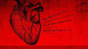 Artistic Anatomy Anatomical Heart Wallpaper