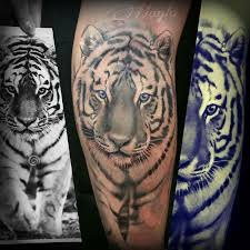 white tiger with blue eyes tattoo. Contemporary Eyes Realistic White Tiger With Blue Eyes By Haylo  Tattoos Intended With Blue Eyes Tattoo I