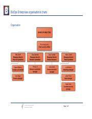 Organisational Charts Pdf Bizops Enterprises