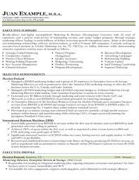 Marketing Resume Examples Adorable Resume Samples Types Of Resume Formats Examples Templates Resume