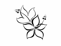 Small Picture Easy To Draw Flowers Patterns Image Gallery HCPR
