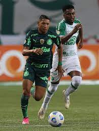 Jogo de hoje! Palmeiras x CRB: onde assistir e prováveis escalações    Futebol