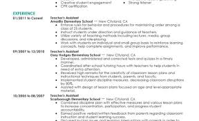 Teaching Resume Samples Readjustment Counseling Therapist Sample