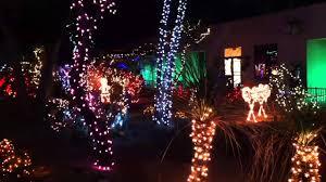 Cactus Garden Holiday Lights
