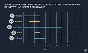 How Long Do Drugs Stay In Your System Chart How Long Do Drugs Stay In Your System