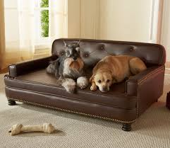 small dog furniture. Small Dog Couch Beds : For The Comfort Of Your Furniture
