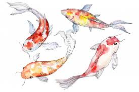 goldfish 2 watercolor png example image 1