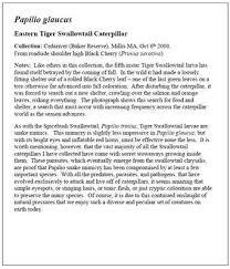 Short essay on tiger
