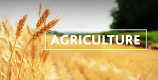 Colleges Of Agriculture Top Agriculture Colleges To Study In The Usa 2019 Helptostudy Com 2020