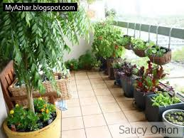 Small Kitchen Garden Garden Design Garden Design With Inspiring Kitchen Gardens For