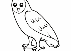 Small Picture Owl Coloring Pages Printables Educationcom