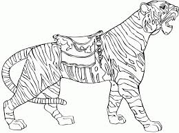 Small Picture Amazing Horse Coloring Pages Coloring Pages