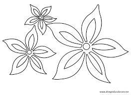 Crisantemo Da Colorare Per Bambini