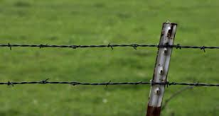 Barbed Wire Fence by JaedenDak on DeviantArt