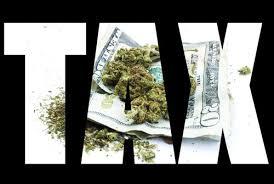 english concept essay on legalizing marjiana medical marijuana persuasive essay medical marijuana research essay on marijuana legalization cdc stanford resume help essay