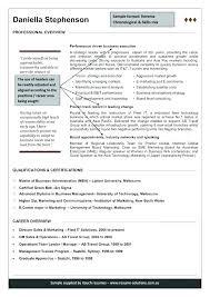 Executive Resume Writing Tips Best Executive Resume Writers Blaisewashere Com
