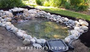 how to start a pond in your backyard