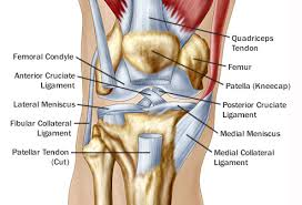 Reasons For Pain Behind In Back Of The Knee