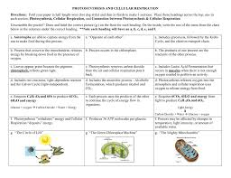 Concept Map Photosynthesis And Cellular Respiration