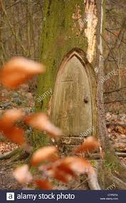wood carving sculpture of small door in base of tree seen through autumn leaves derbyshire uk could this be a hobbit s home