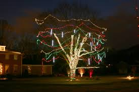 christmas outside lighting. outdoor lighting perspectives creates holiday tree designs that dance to music christmas outside g
