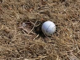 「ゴルフ アプローチ ぬかるみ」の画像検索結果