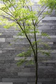 Small Picture 166 best Garden Walls images on Pinterest Garden walls