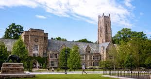 rhodes college niche