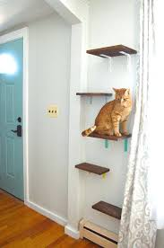 wall mounted cat furniture. Delighful Mounted Wall Mounted Cat Shelves Not Your Typical Tree 3 Creative Perches  Feeding Shelf Intended Furniture