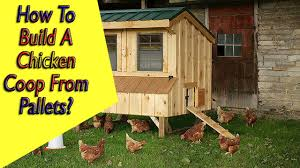 pallet building plans. ▻ how to build a chicken coop from pallets | plans - youtube pallet building
